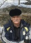 Igor, 63  , Tolyatti