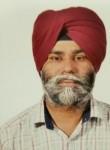 HSMALHI , 45  , Ludhiana