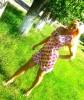 Svetik, 26 - Just Me Photography 9