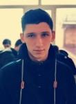 Denis, 19  , Akhtyrskiy