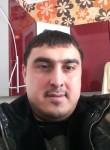 suhrobsafarod186