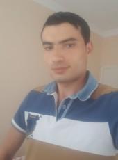 Dogan yavrucu, 25, Turkey, Giresun