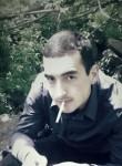 David, 26  , Yerevan