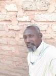الاسد مسمار , 40  , Khartoum