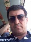 Ion, 48  , Qalqilyah