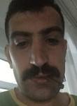 mehmet, 32  , Istanbul