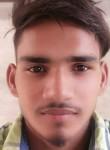Prince, 22  , Rampura (Punjab)