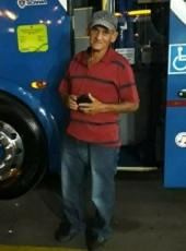 helisantiago, 69, Brazil, Paranavai