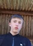 Aleks , 20  , Kuvshinovo