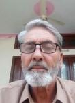 Mehboob, 54, Islamabad