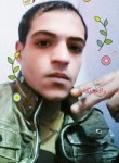 yaesr yaesr, 18  , Cairo