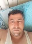elçin, 35  , Baku