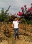 灭菌, 34  , Chengdu