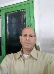 حسن السفير, 51  , Cairo