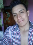Nelson, 24  , Quito
