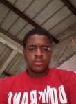Pitton, 18  , Ducos