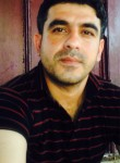 farid, 34, Baku