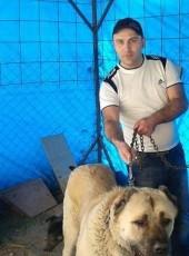 Hayk, 37, Armenia, Yerevan