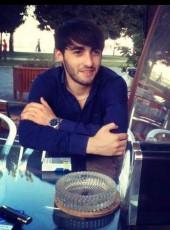 Tamerlan, 28, Azerbaijan, Baku