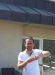 Mustafa, 33  , Kangal