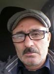 Nizami, 53  , Tarko-Sale