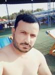 Sher boss, 38, Tashkent