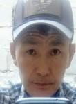 Taalai, 46  , Bishkek