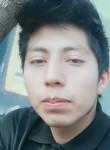 Miguel, 26  , Mexico City