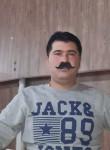 پیمان, 19  , Shiraz