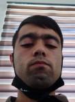 Alisher, 22  , Tashkent