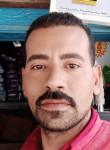 على عبد النبى, 37  , Disuq