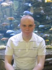 Ilya, 31, Russia, Voronezh
