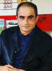 Richard Walker, 56, Romania, Bucharest