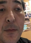 金ちゃん, 43, Aomori Shi