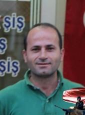 Ismail, 44, Turkey, Selimpasa