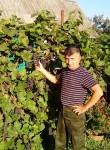 Aleksandr, 49, Kimovsk