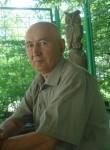 salavat, 65  , Magnitogorsk