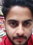 Ashish, 25 лет, Chidawa