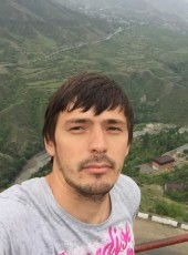 Renat, 31, Russia, Moscow