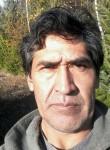 Fabian, 50  , El Bolson