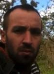 serdar, 30  , Kumru