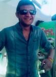İbocan , 30  , Bulancak