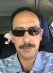 Joe, 44  , Sterling Heights