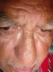 Manfred koller, 65  , Graz