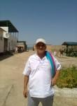 Olim, 50  , Tashkent