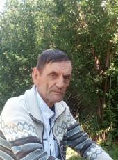 Vladimir, 69, Russia, Pospelikha