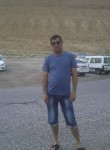 Caldararu, 48  , Qalqilyah
