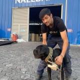 Tony, 24  , Prizren