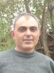TIGR, 50  , Yerevan