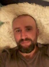 Sergey, 40, Russia, Roslavl